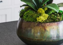 Faux arrangement with moss