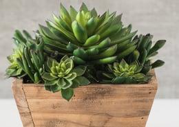 Faux arrangement with succulents